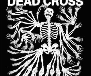 Dead Cross Review